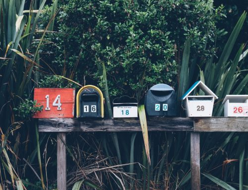 MplusKASSA koppelen aan MailChimp of andere Nieuwsbrief tool